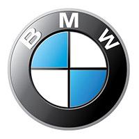 bmw logo w